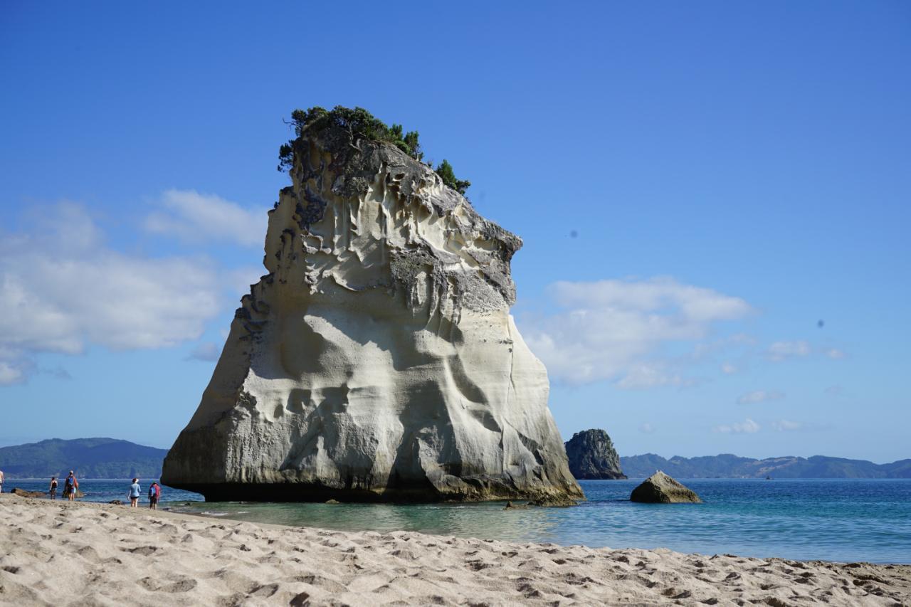Von der Cathedral Cove nach Waihi zu den Goldsuchern