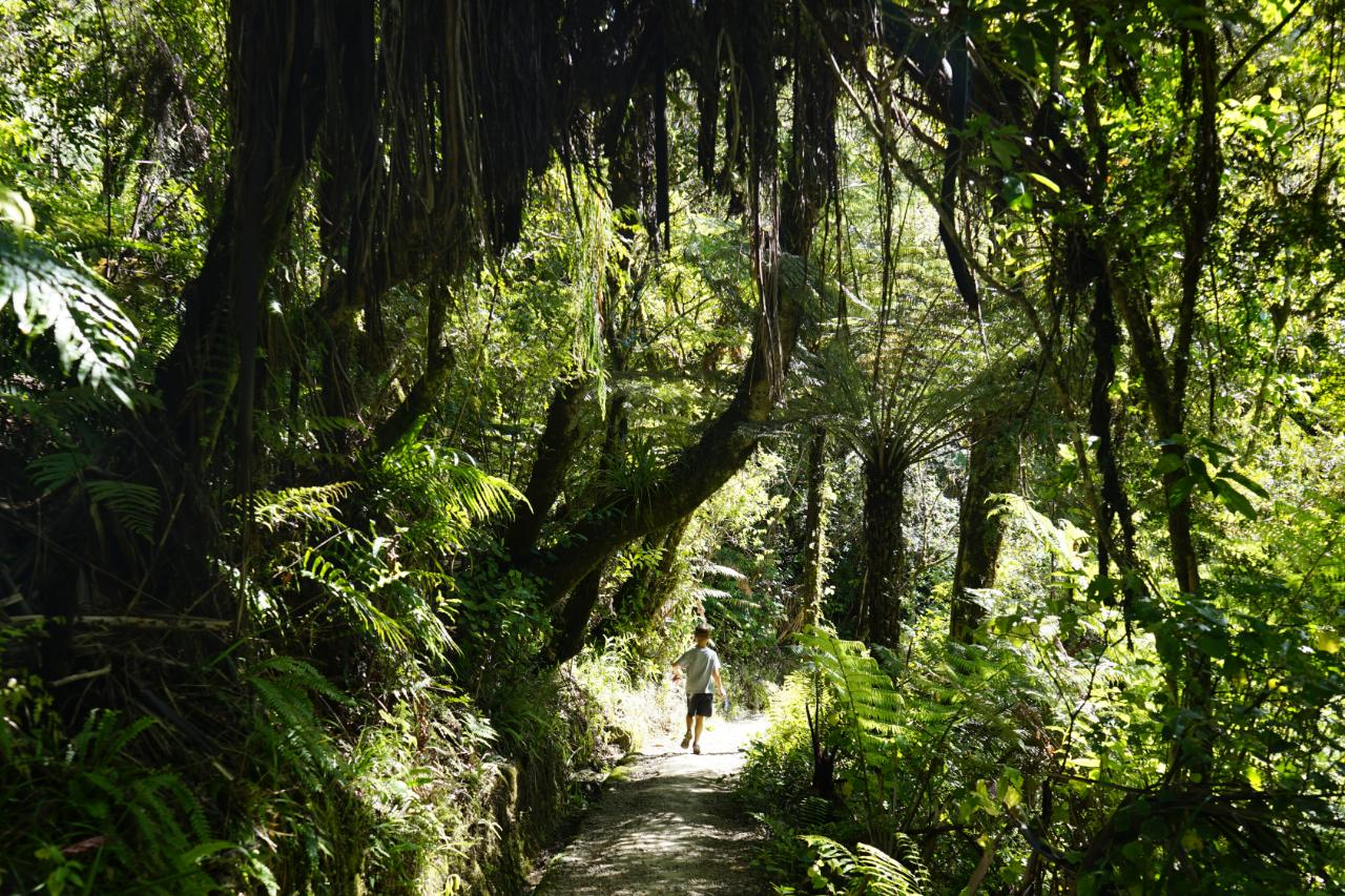 Unterwegs im Waitomo Valley