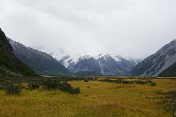Sommer im Mount Cook National Park?