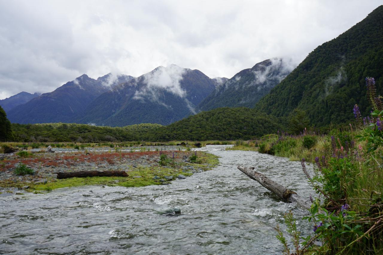Cascade Creek – eine Stunde vor dem Milford Sound